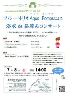vol.13-aqua-pomps
